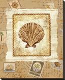 Ship To Shore Shells II Bedruckte aufgespannte Leinwand von Lisa Ven Vertloh