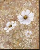 Lace Flowers II Bedruckte aufgespannte Leinwand von Lisa Ven Vertloh