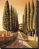 Tuscan Retreat Stretched Canvas Print by Santo De Vita