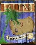 Antigua Rum Toile tendue sur châssis par Karen J. Williams