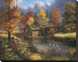 Glory of Autumn Stretched Canvas Print by Rudi Reichardt