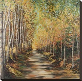 Path of Trees Stretched Canvas Print by Suzanne Etienne