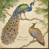 Peafowls Stretched Canvas Print by Betty Whiteaker