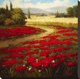 Red Poppy Trail Stampa su tela di  Hulsey