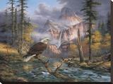 Eagles Perch Impressão em tela esticada por Rudi Reichardt
