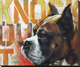 Boxer Stretched Canvas Print by Marilyn Kelley