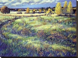 Grasslands Stretched Canvas Print by Claude Rousseau