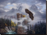 Eagle's Domain Stretched Canvas Print by Rudi Reichardt