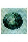 Chevron Shell IV Kunstdruck