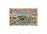 Lincoln Memorial & Cherry Blossoms Poster
