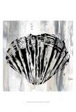Black Shell II Plakater av Andrea James