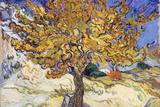 桑の木 Mulberry Tree, 1889 高画質プリント : フィンセント・ファン・ゴッホ