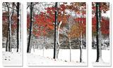 SnowFall ポスター : バーニー・リーバーマン