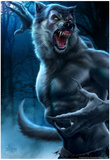 Loup-garou Photographie par Tom Wood