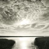 Through The Marsh Reproduction procédé giclée par Michael Kahn