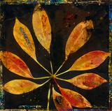 Botany Trip VII Reproduction procédé giclée par  Douglas