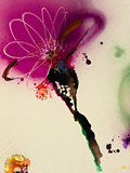 Floral Mist I Giclee Print by  Leila