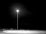 Night Lovers Fotografisk trykk av Felipe Rodriguez