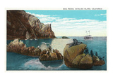 Santa Catalina Island, California - View of the Seal Rocks Plakater af  Lantern Press