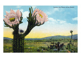 California - View of a Flowering Cactus Art by  Lantern Press
