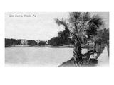 Orlando, Florida - View of Lake Lucerne from Shore Poster von  Lantern Press