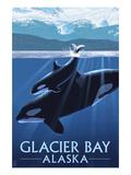 Glacier Bay, Alaska - Orca and Calf Giclée-Premiumdruck von  Lantern Press