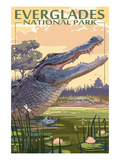 The Everglades National Park, Florida - Alligator Scene Print by  Lantern Press