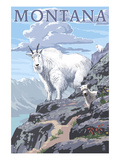Mountain Goat and Kid - Montana Lámina giclée prémium por  Lantern Press