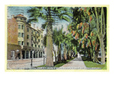 San Jose, California - North 1st Street View of St. James Hotel and Park Poster by  Lantern Press