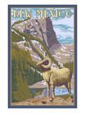 Big Horn Sheep - New Mexico Láminas por  Lantern Press