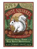 Brevard, North Carolina - White Squirrel Plakat af  Lantern Press