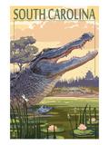 South Carolina - Alligator Scene Art by  Lantern Press