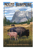 Black Hills, South Dakota - Bison Grazing Posters af  Lantern Press