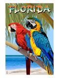 Florida - Parrots Poster av  Lantern Press
