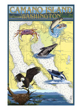 Camano Island, Washington - Nautical Chart Plakater av  Lantern Press