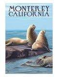 Monterey, California - Sea Lions Pósters por  Lantern Press