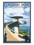 Clingmans Dome - Great Smoky Mountains National Park, TN Posters av  Lantern Press