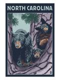North Carolina - Bears in Tree Póster por  Lantern Press
