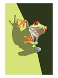 Tree Frog Posters af  Lantern Press