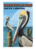 Kiawah Island, South Carolina - Pelicans Affiche par  Lantern Press