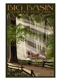 Big Basin Redwoods State Park - Deer and Fawns Pósters por  Lantern Press
