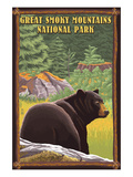 Black Bear in Forest - Great Smoky Mountain National Park, Tennessee Art par  Lantern Press