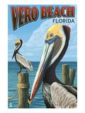 Brown Pelicans - Vero Beach, Florida Affiche par  Lantern Press