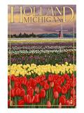 Holland, Michigan - Tulip Fields Prints by  Lantern Press