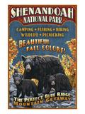 Shenandoah National Park, Virginia - Bear and Cubs Pósters por  Lantern Press