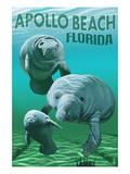 Apollo Beach, Florida - Manatees Prints by  Lantern Press