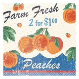 Vintage Fruit Square IV Poster af Hugo Wild