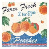 Vintage Fruit Square IV Poster di Hugo Wild