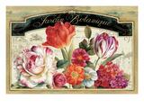 Garden View I Plakater af Lisa Audit