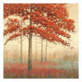 Arbres d'automne II Reproduction giclée Premium par James Wiens